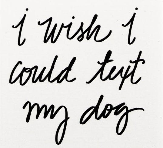 "Portavasos Thirstystone® ""I wish I could text my dog"""