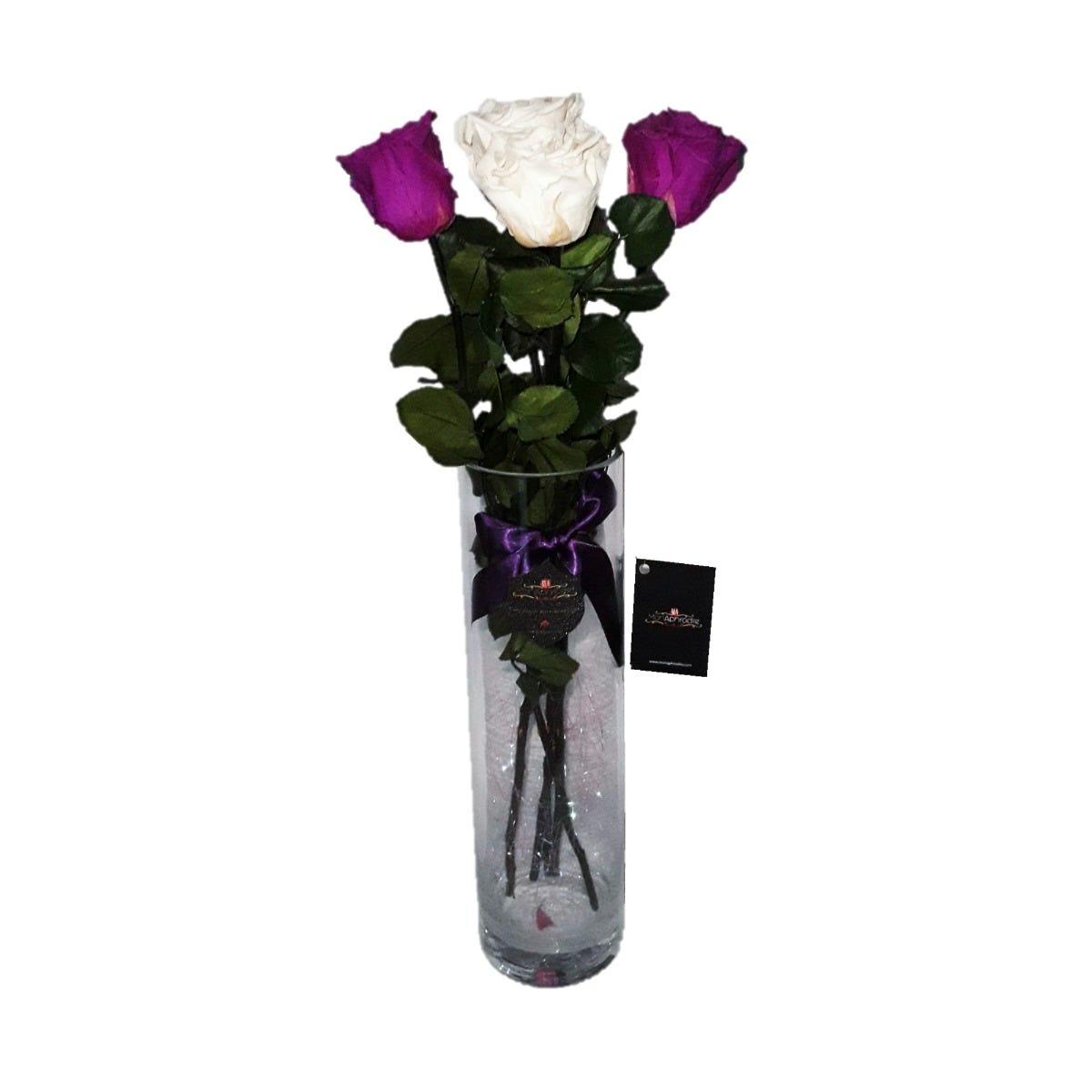 Arreglo floral de rosas naturales Mon Aphrodite® Cylinder Purple