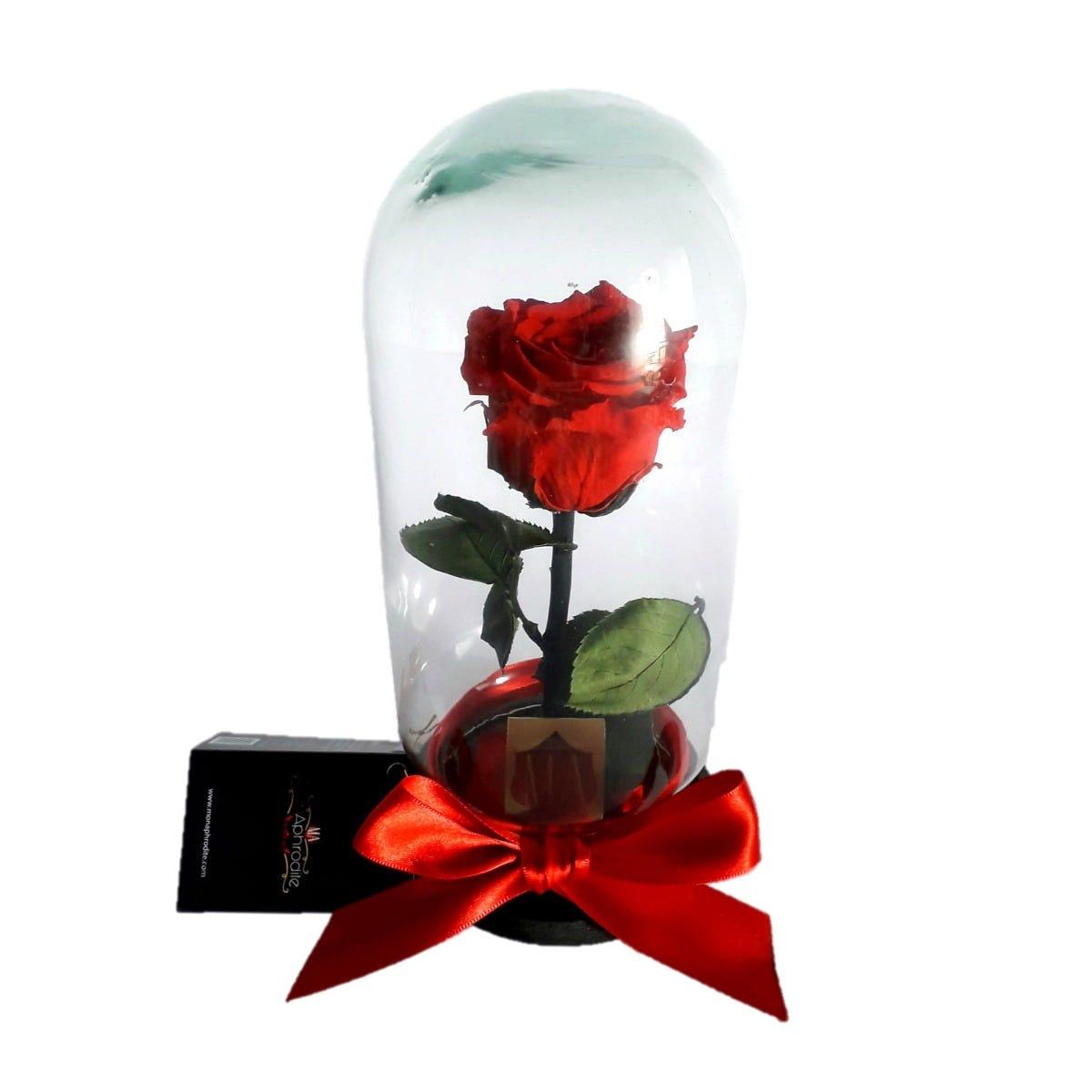 Capelo de vidrio con flor Mon Aphrodite® One-Rose B