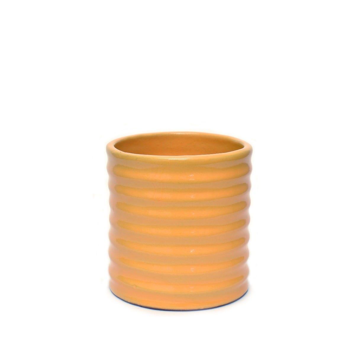 Maceta de pasta de barro Suculenta con forma de cilindro anillado
